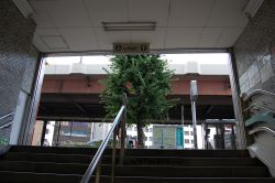 都営地下鉄岩本町駅下車、徒歩10分のバレエ教室