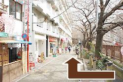 日比谷線・東急東横線『中目黒』駅(渋谷から2駅)下車、徒歩3分のバレエ教室