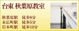 バレゾナンス東京バレエスタジオ台東 秋葉原教室